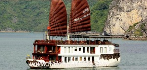 12163876-violet-cruise-halong-bay