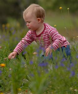 Mount Annan child in flowers
