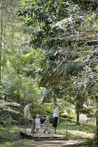 Banksia garden rainforest walk with family