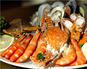 Seafood at Cuisine Unplugged1