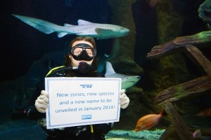 UnderWater World announces exciting new changes