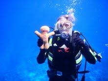 Gingy doll goes diving in Niue with PTM Robin Woods
