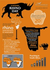 20 Years of Rhino Conservation (infographic)