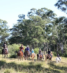 Sydney Trail Riding Centre2 - vertical
