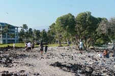 The Fairmont Orchid - Coastal Cleanup