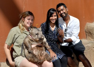 Tony and Reya meet Meg the Southern Hairy Nosed Wombat