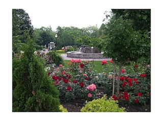 SECTION of the Rose Garden, open May through October. (Toronto Tourism)