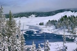 Yellowstone in winter offers transformed crowds-free landscapes, perfect for a snow coach day tour via Jackson Hole's Wyoming Inn.