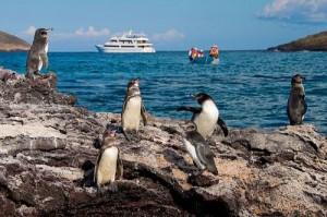 VOYAGERS TRAVEL GALAPAGOS WILDLIFE