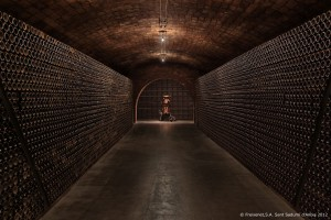 MORE modern section of the cellars. (Freixenet Wines)