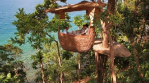Romantic breakfast together in the Treepod.