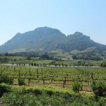 South Africa Muratie Vineyards SBosch.RSZ