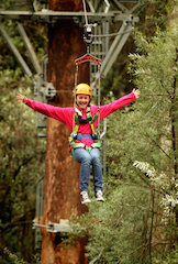 Zip down to Otway Fly for the ultimate treetop adventure these school holidays
