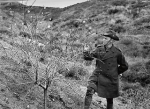 Hubert Wilkins at Gallipoli.NationalLibraryOfAustralia.Rsz