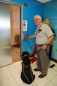 Assistance Animals facility at BNE Domestic Terminal April 2014