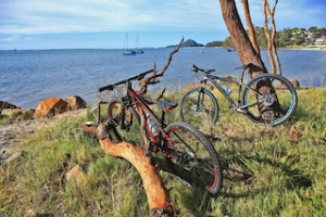 mountain bikes - Port Stephens