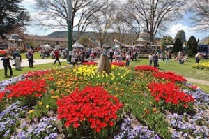 CROWDS enjoy the spectacular colours of Tulip Time in Bowral's Corbett Gardens. (Dee Kramer)