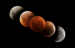 The magnificent changing moon during a total eclipse. Phil Hart