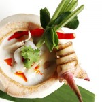 Chicken and Galangal with Young Coconut Milk Soup