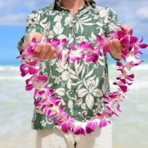 Lei for the day