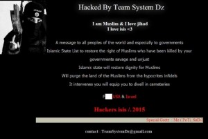 Screen shot of the hacked Hobart Airport site