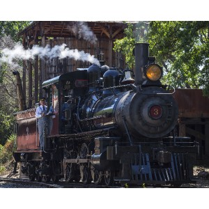 Saturday, April 18, 2015 Brakeman, David Ethier of Sonora, peers out from Railtown 1897 Steam Engine 3 prior to the Wildflower Train departure from Jamestown, California. Railtown 1897 State Historic Park, Wildflower Train, Jamestown, California