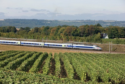 TGV in the vineyards
