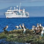Galapagos - Isabela-II and Boobies - Aurora Expeditions - pic
