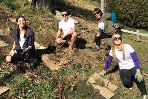 Planting trees for a good environmental cause – Crowne Plaza Queenstown team members (L to R) Olivia Leitch, Guy Robinson, Fiona Lawson and Sarah Williams