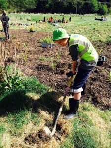 Queenstown Primary School pupil Morris Finnigan planting a 'Tree for Survival'