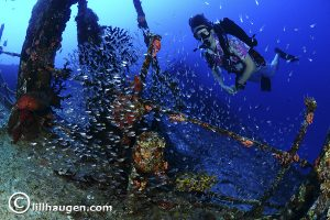 3 Photo Credit Lill Haugen Centara Maldives Diving
