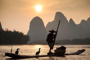 Cormoran Fishing, Yangshuo, China