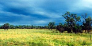 Storm season in the Australian tropical savanna. Euan Ritchie