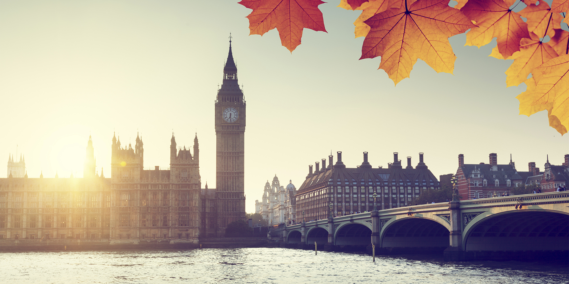 autumn leaves and Westminster, London, UK