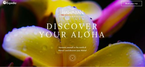 discover_your_aloha_landing_page_image