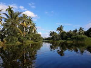 Kerala's pristine nature is the key attraction