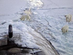 polar-bears-on-the-sea-ice-of-the-arctic-ocean-near-the-north-pole-in-an-earlier-year-2003-uss-honolulu-pictured