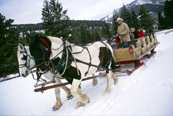 gi_123775_320-guest-ranch-sleighing-photo