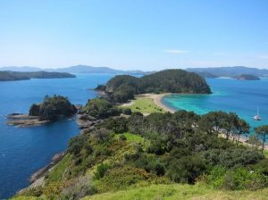 Robertson Island, Bay of Islands