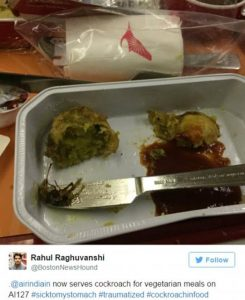 Rahul Raghuvanshi's tweet shows cockroach portion in meal