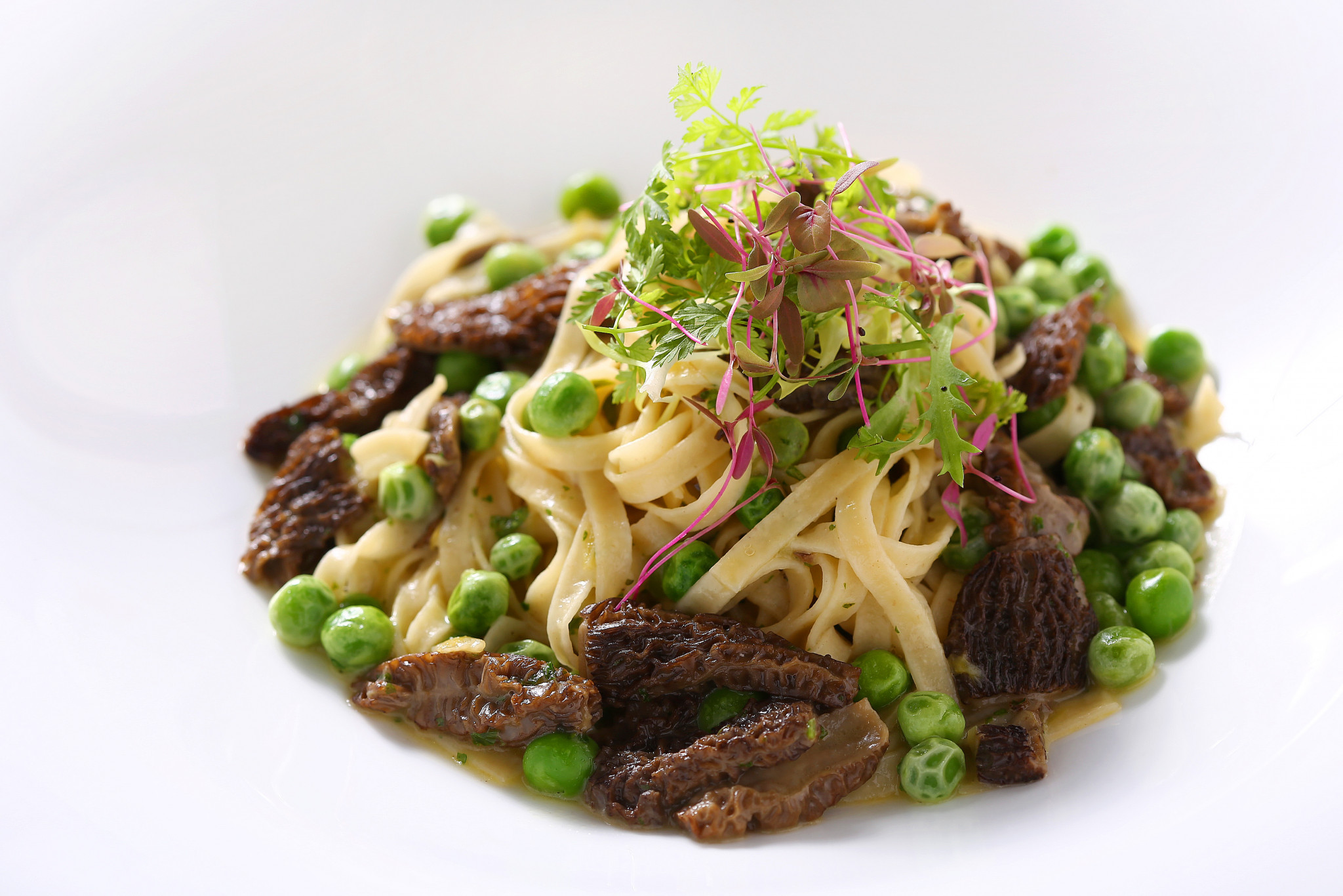 Linguini Pasta with Leeks and Morels