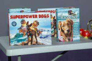 Global Travel Media » Blog Archive » Surf Dog Ricochet Stars